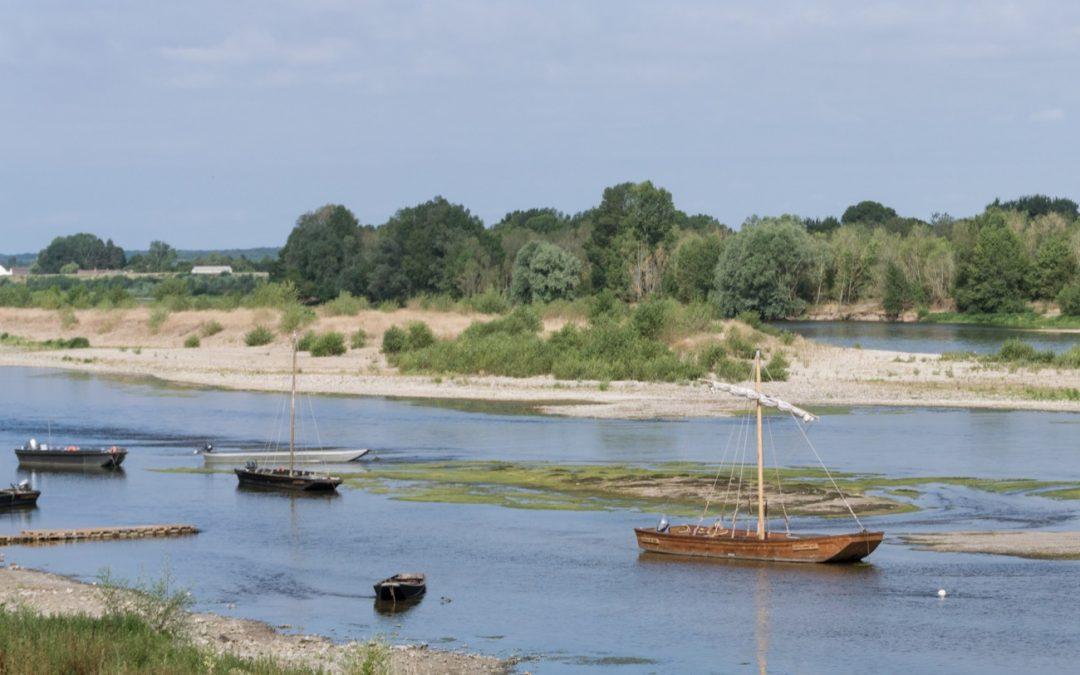 Le festival de Loire : l'évènement à ne pas rater à Orléans vient de commencer